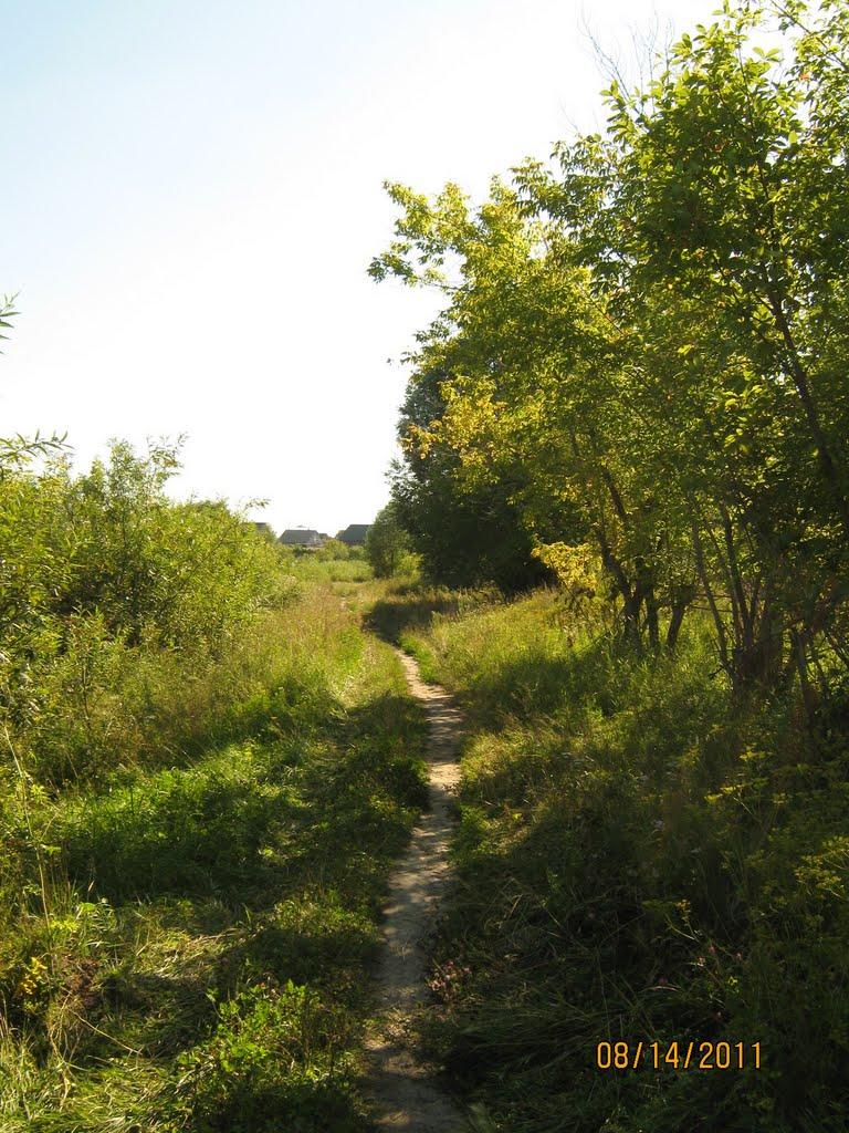 Тропинка вдоль речки, Новоалтайск