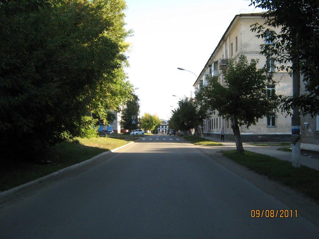 Улица Партизанская, Новоалтайск