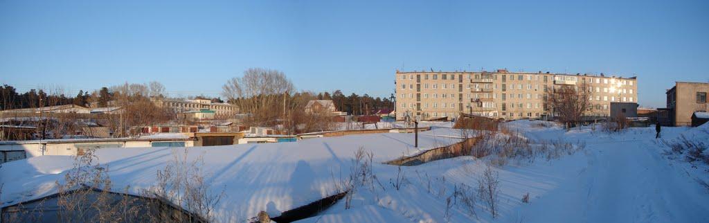 Взгяд зима 2011г., Павловск