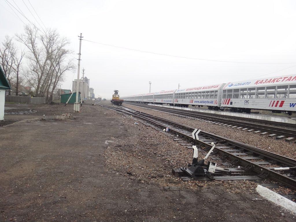 Станция Поспелиха, Вид на юг, Поспелиха