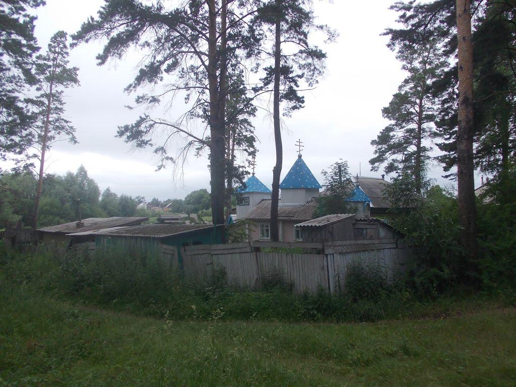 село Ребриха.Домик с куполами., Ребриха