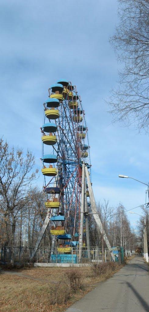 A Ferris Wheel in the Kirovs Park. 2010 November, Рубцовск