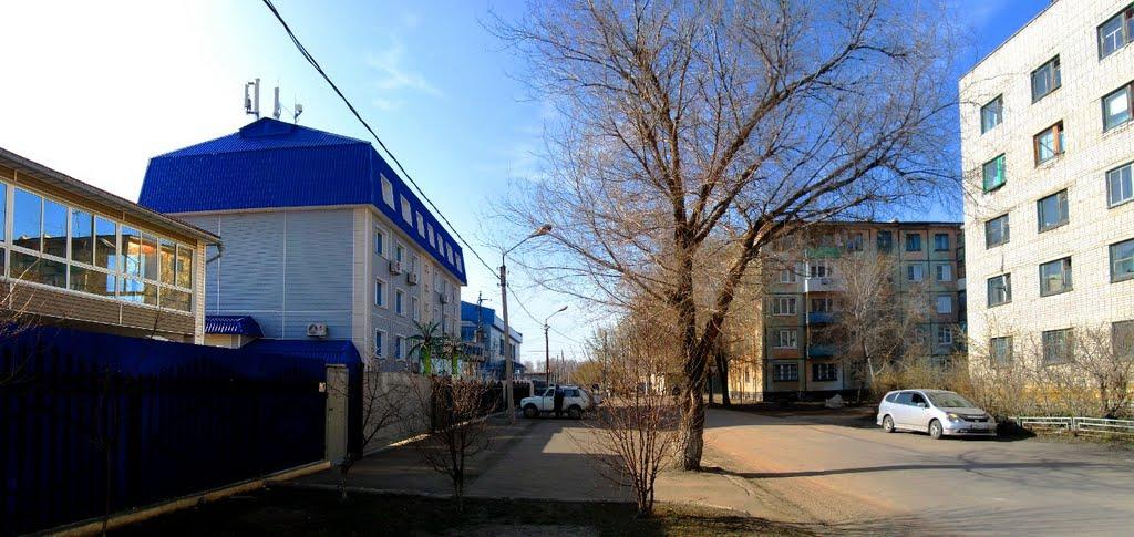 улица Королева. Рубцовск., Рубцовск