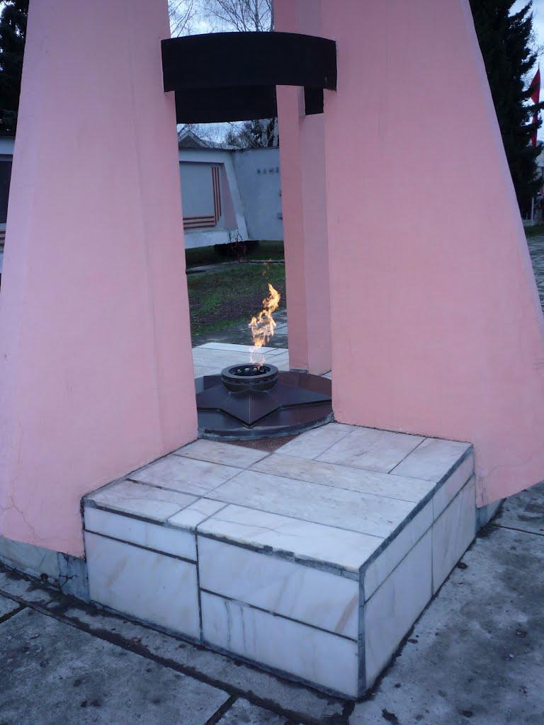 Мемориал Славы, Солонешное