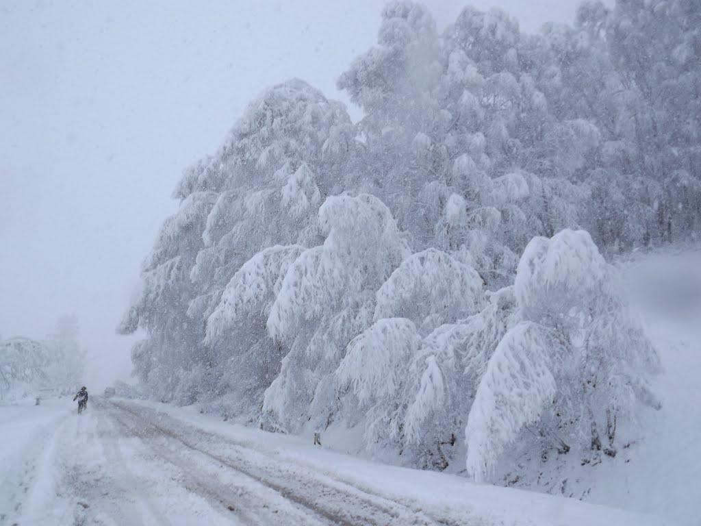 Какая она зима, Солонешное