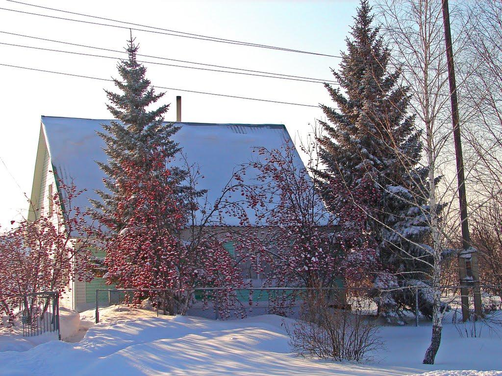алтайский край топчиха село, Топчиха