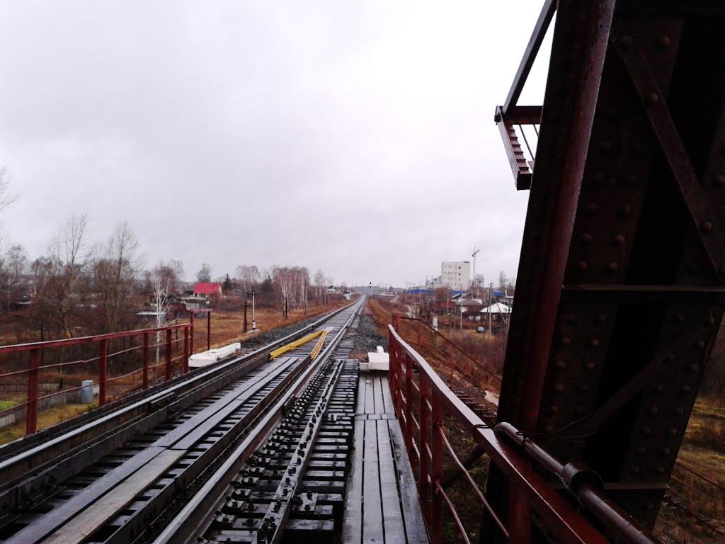 Большереченский Ж/Д мост, Троицкое