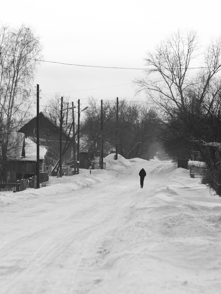 The figure on the village street, Троицкое