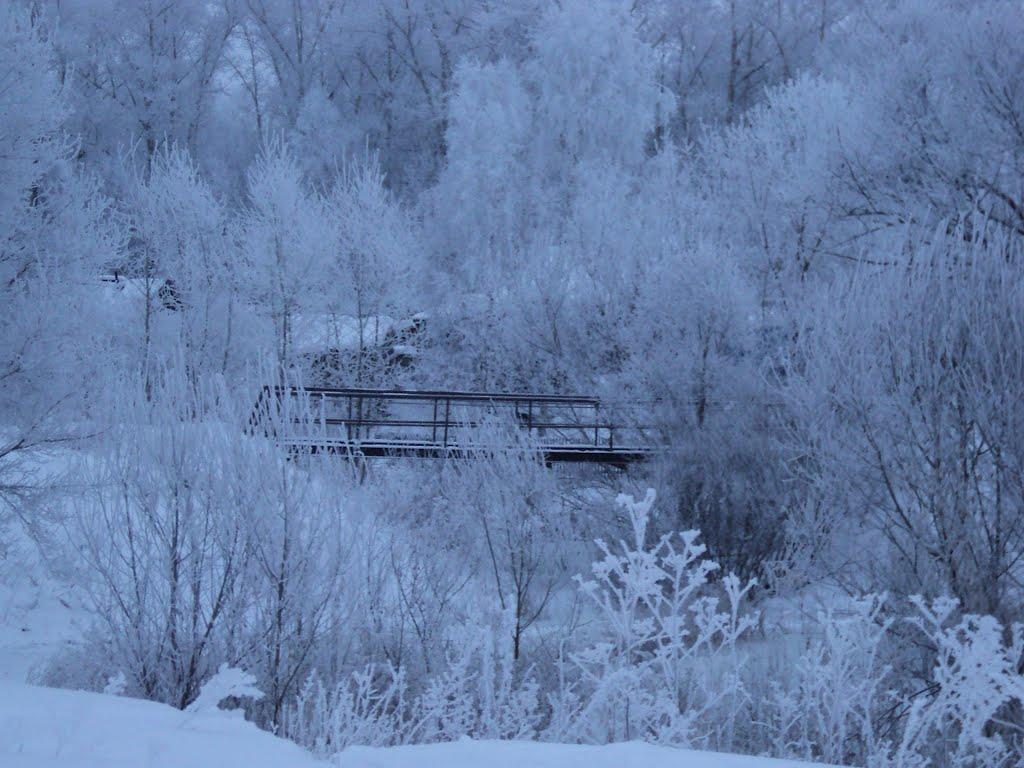 Январское утро, Целинное