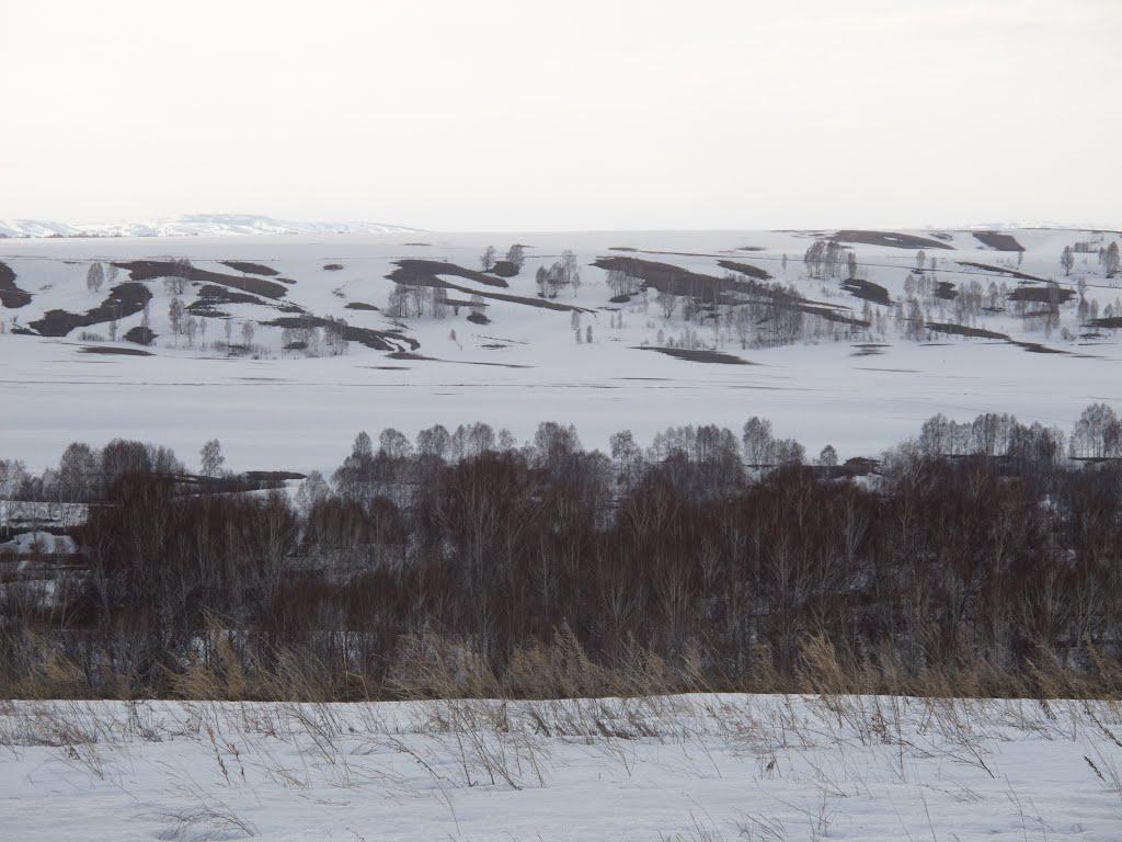 Алтайский край. Бийский район. Около Шебалино, Шебалино