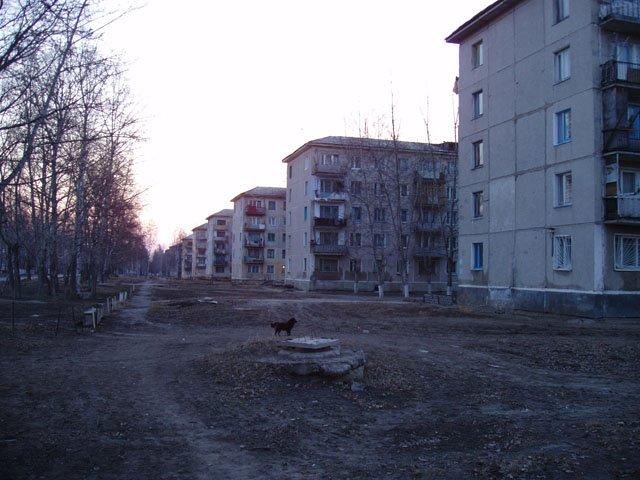 дома, Возжаевка
