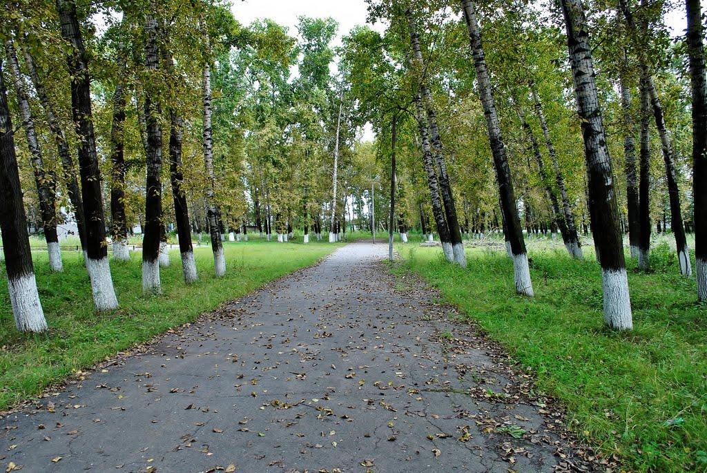 Старый парк, Екатеринославка