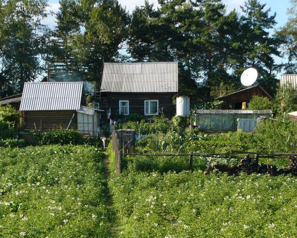 Вот моя деревня, вот мой дом родной..., Зея