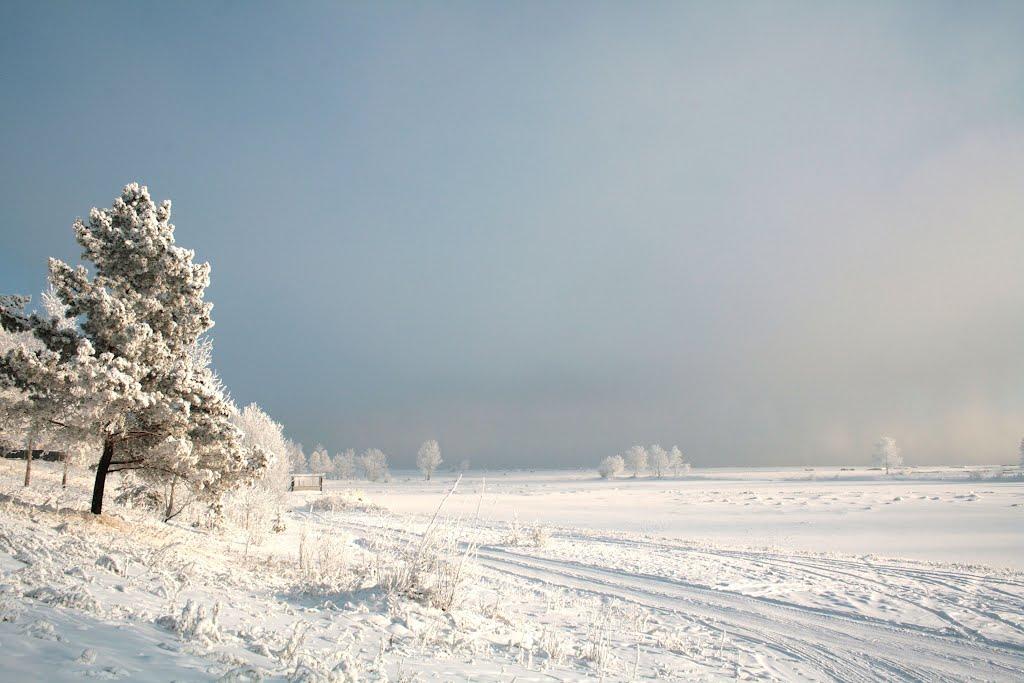 У Реки в январе - фотография 5 из 6  - глазами англичанина, Зея