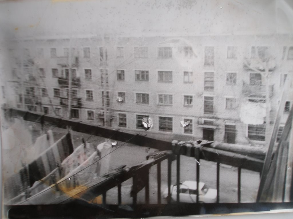 1988, Серышево