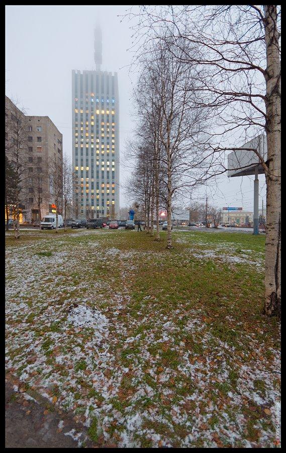 Туман, аллея, Архангельск