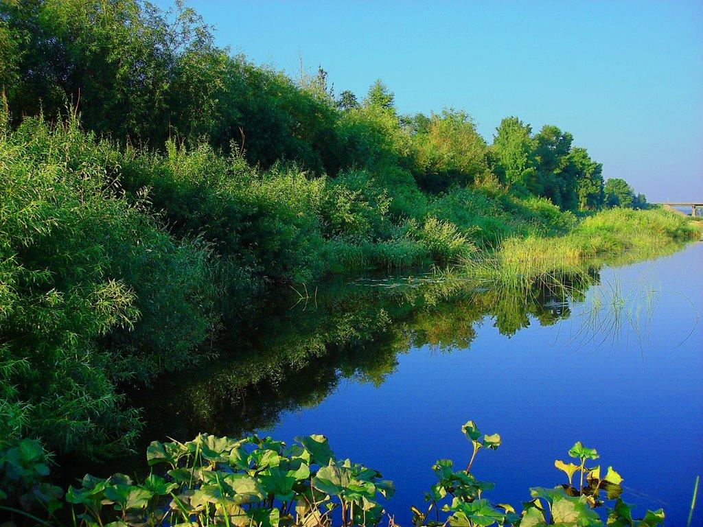 Река Вель, Вельск