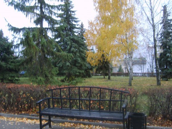 скамейка в аллее, Алексеевка