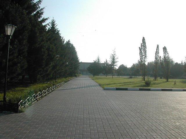 возле гастронома утром, Алексеевка