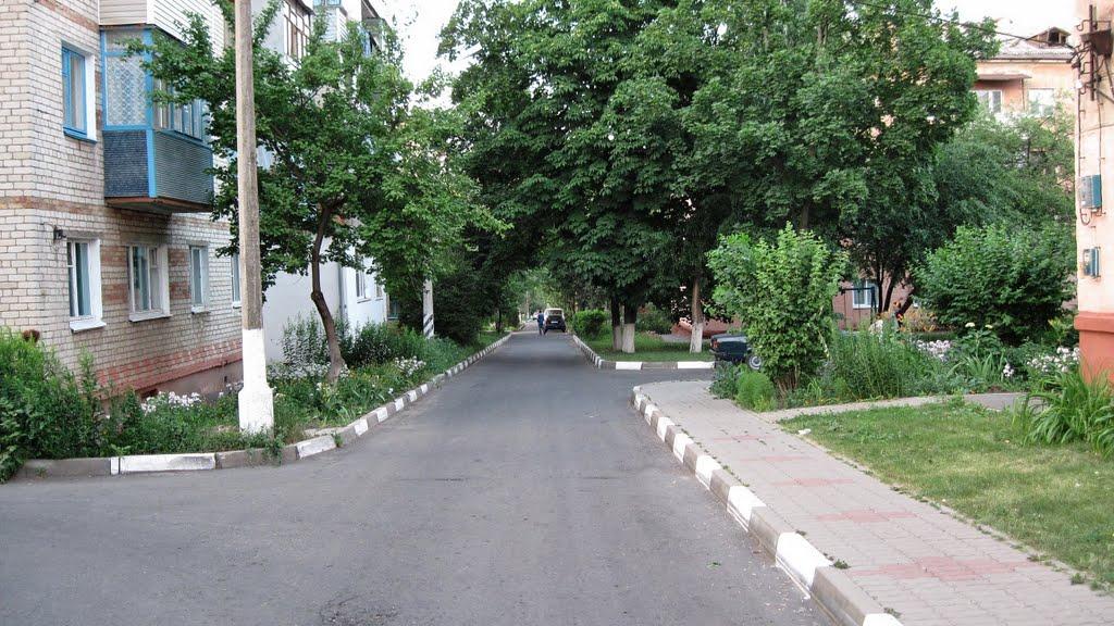 ул. Фрунзе, Губкин