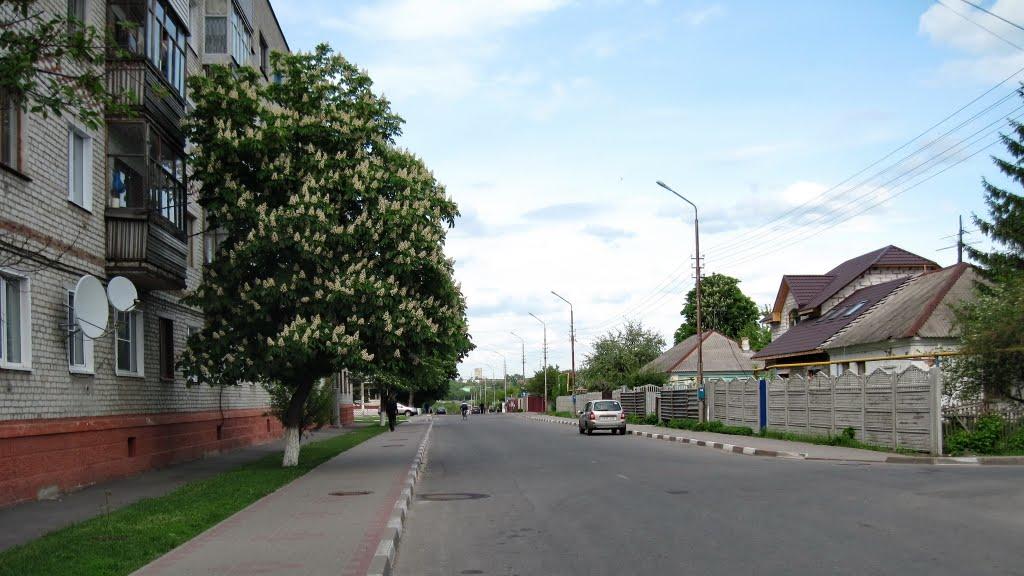 ул. Горького, Губкин