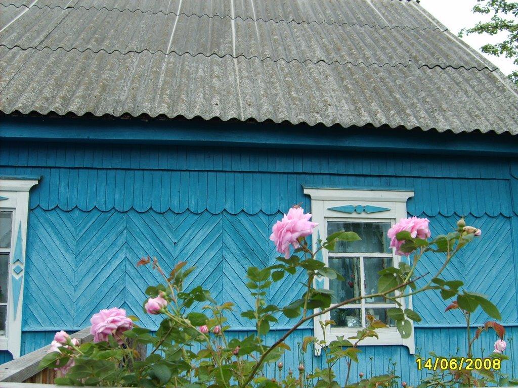 Дом в Салтановке, Алтухово