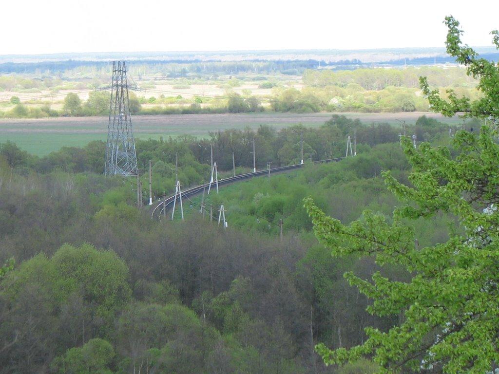 Panorama 1, Выгоничи