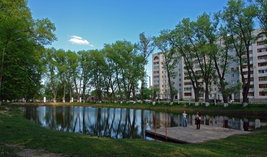 Пруд в городском, Клинцы