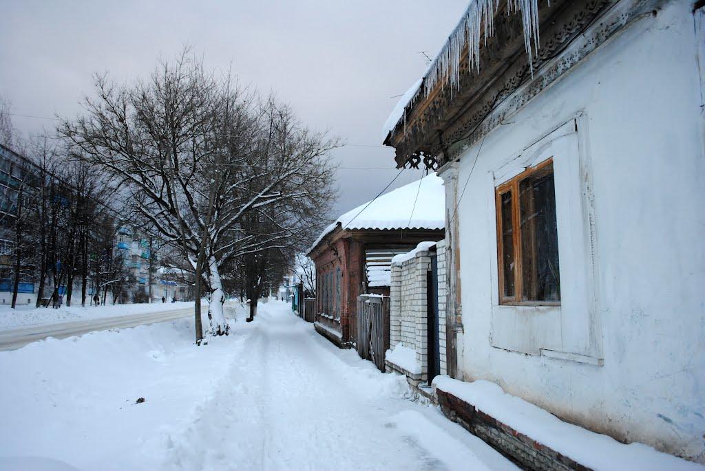 DSC_2793.jpg, Новозыбков