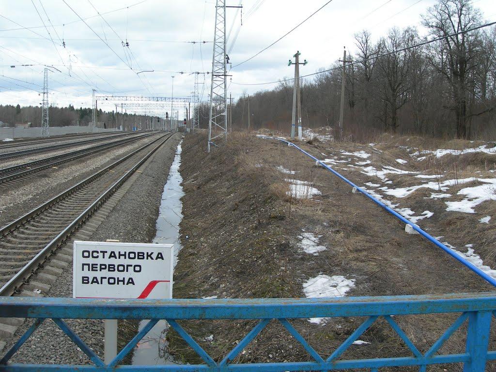 Вид с высокой платформы на север, Балакирево