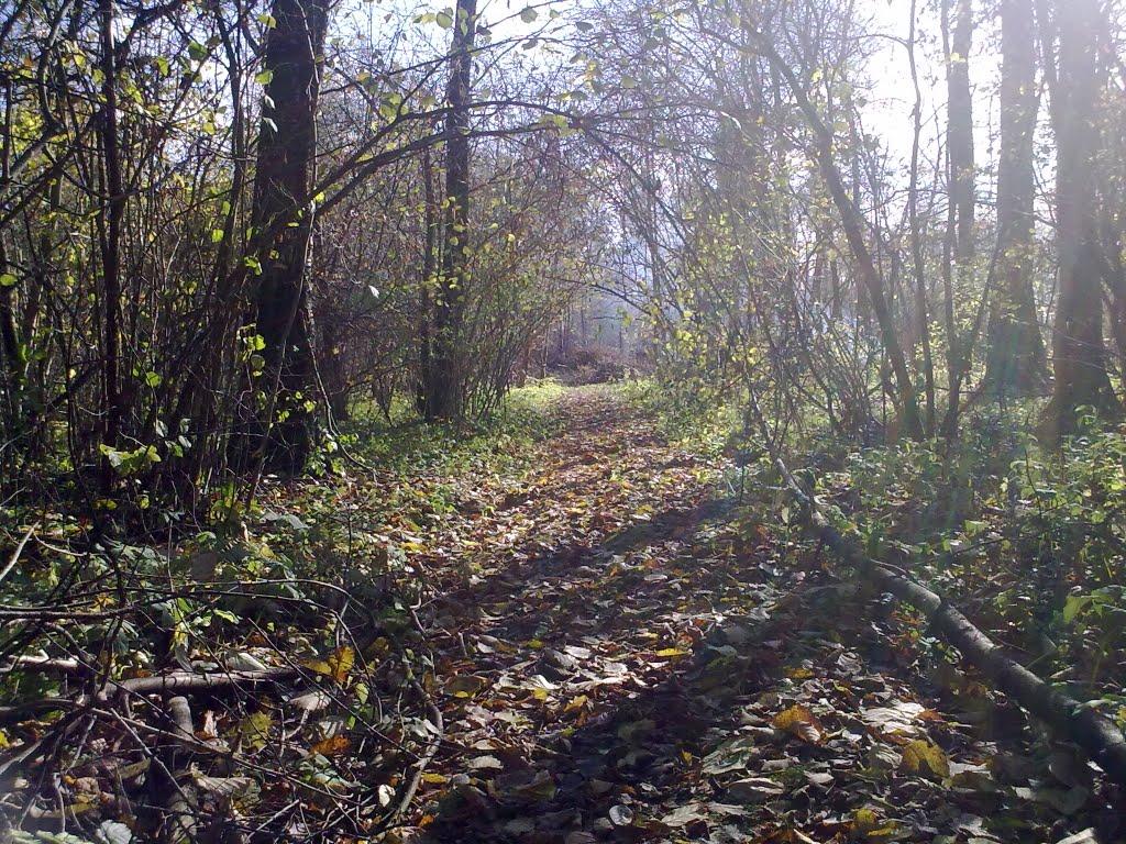Тёплая осень, Балакирево