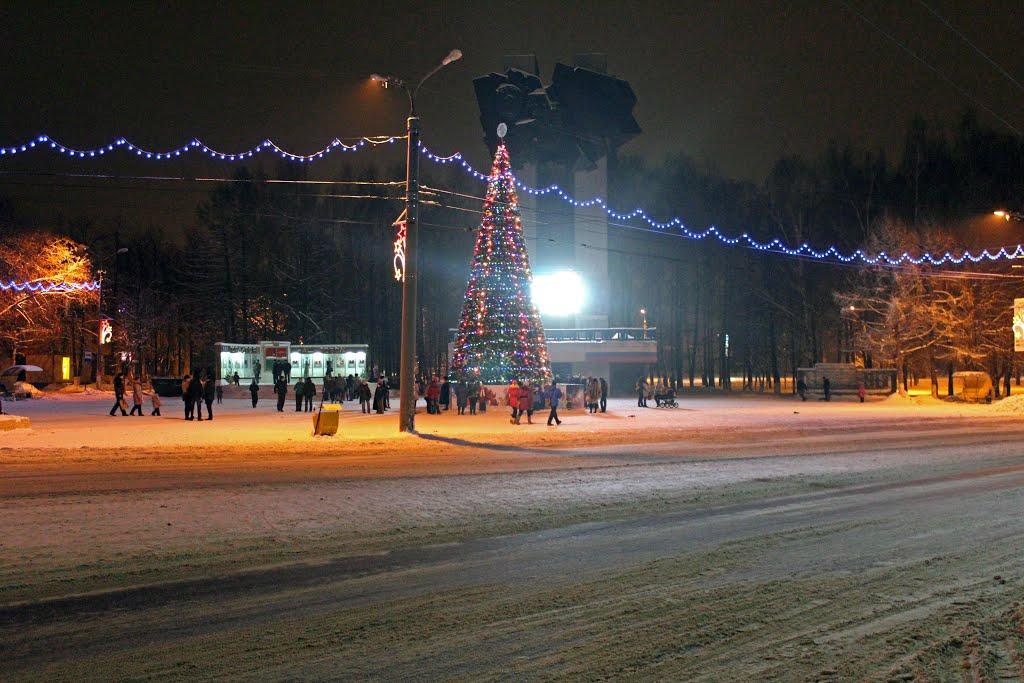 Ёлка 2013, Ковров