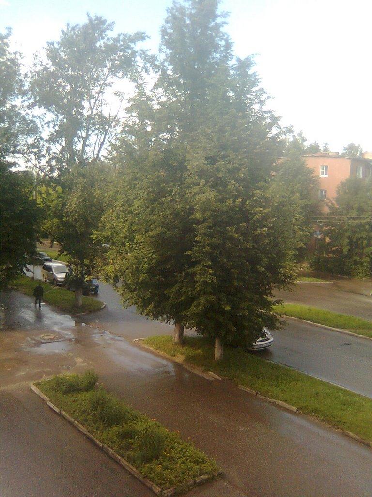 лето после дождя, Кольчугино
