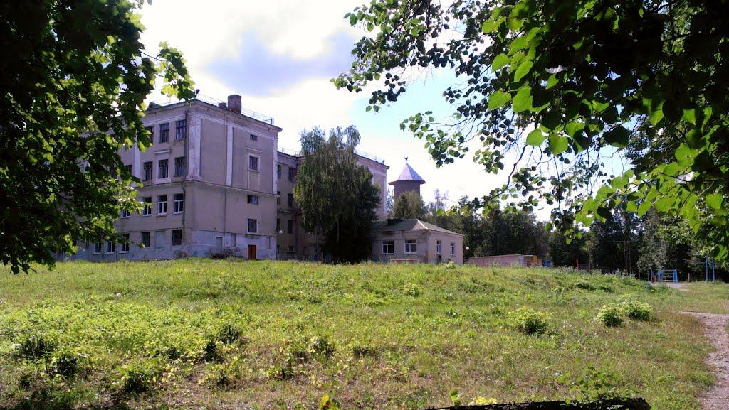 Школа №6, Кольчугино