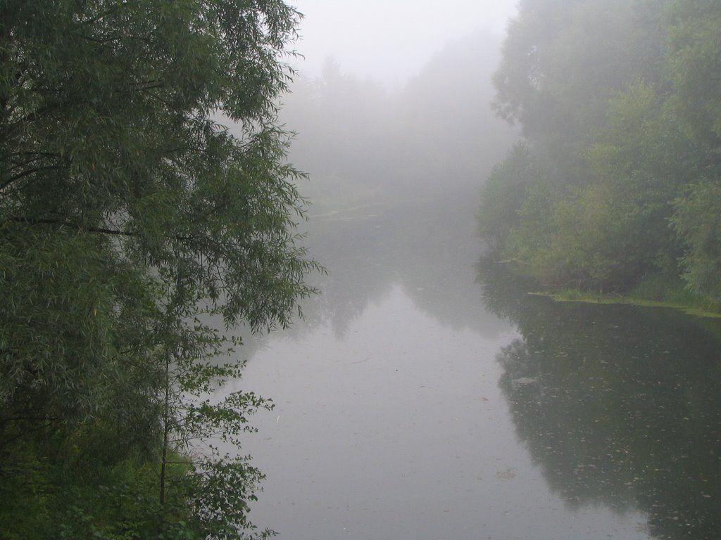 Туманное утро. С Кузнечного моста, Меленки