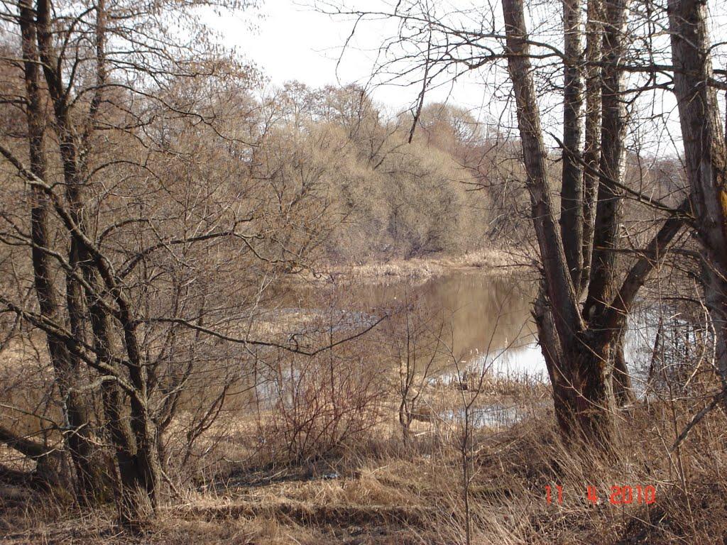 Речка Берёзка, Петушки