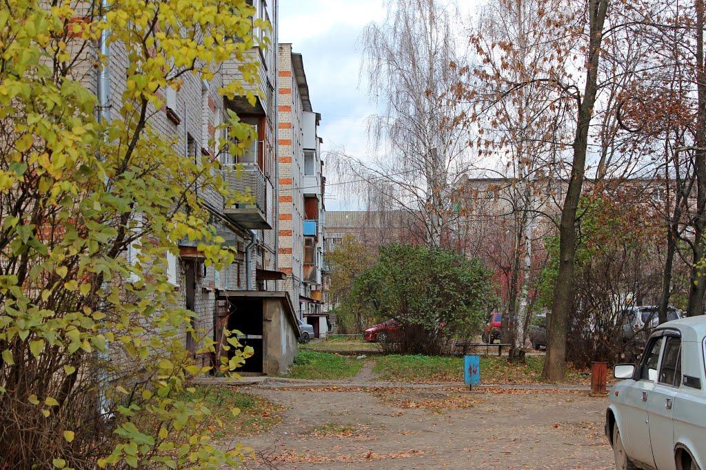Маяковского 21, Петушки