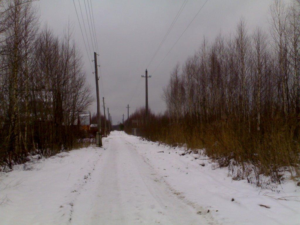 Центральная дорога С/Т Покровчанин 1 января 2007, Покров