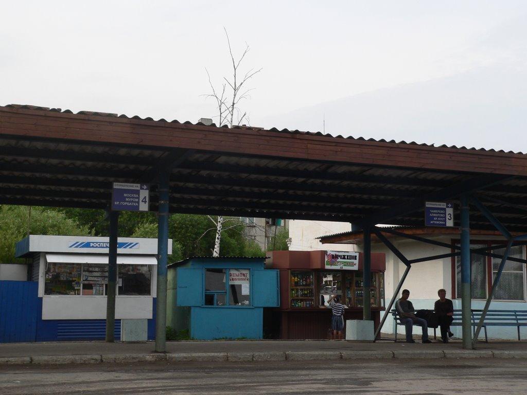 Автовокзал, Судогда