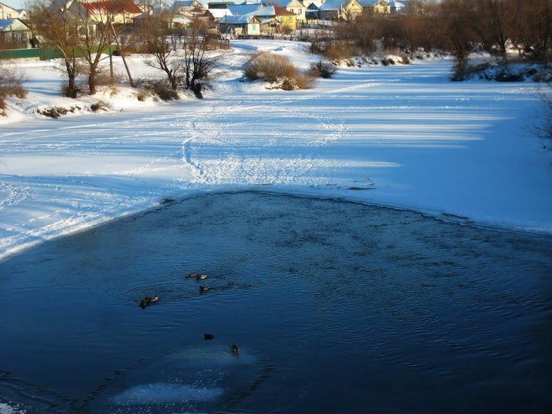 Зимний пляж, Алексеевская