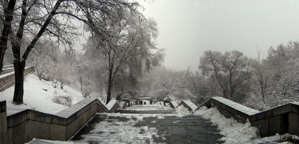 Спуск к Волге., Волгоград