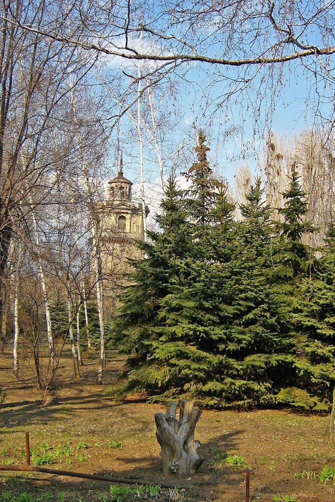 В парке городском., Волжский