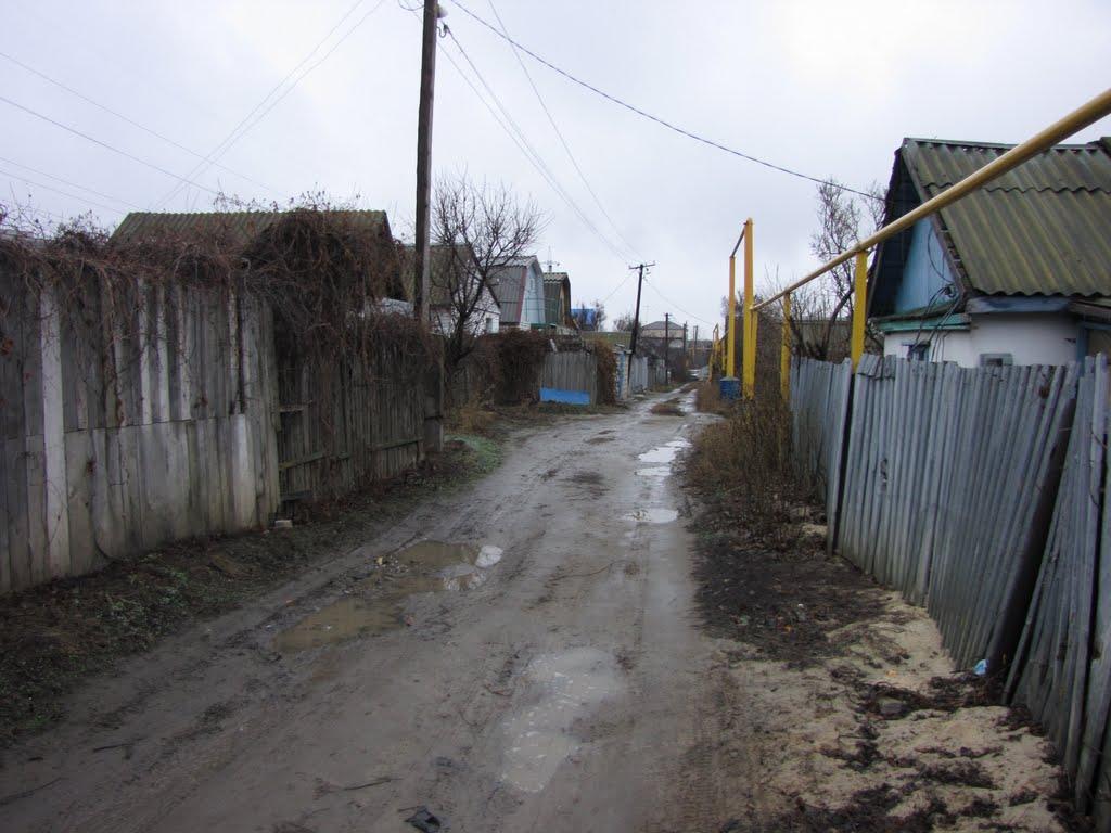 Улица имени Пассара, Городище