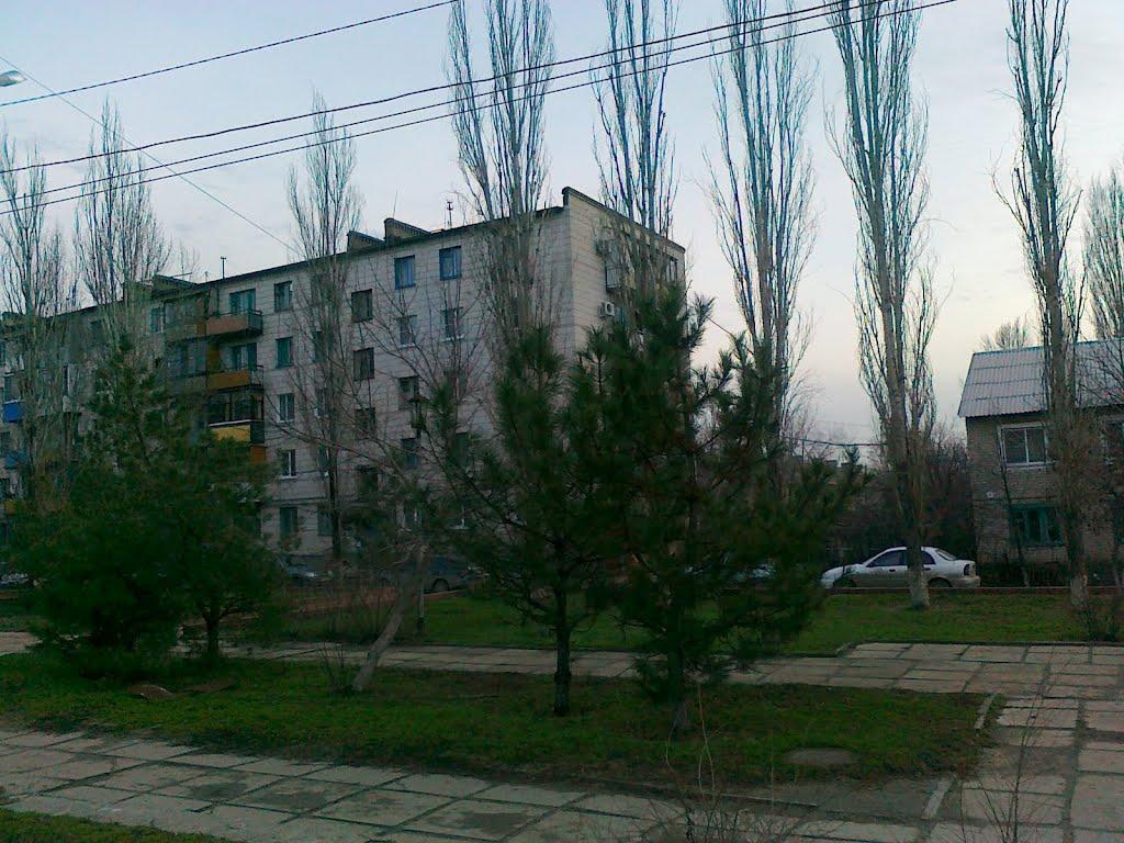 Городище пр.Ленина, Городище