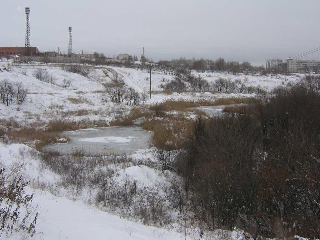 зимний пруд, Городище