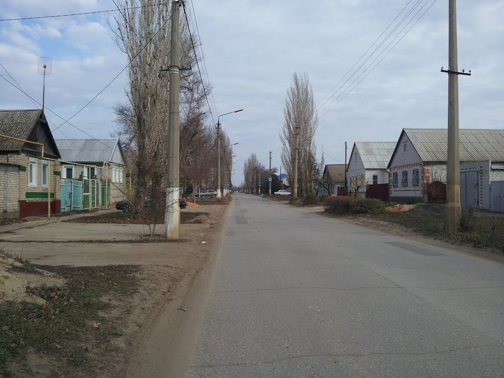 Улица им. В.И. Ленина, г. Дубовка, Дубовка