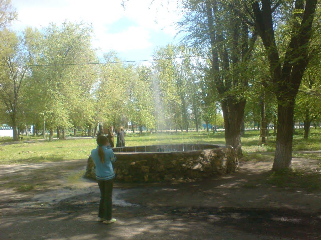 Парк, Елань