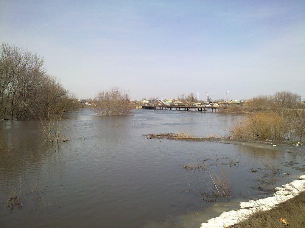 Терсинский мост, Елань