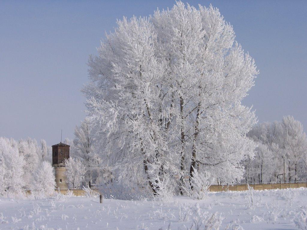 Зимняя сказка, Жирновск
