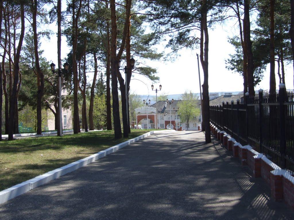 аллея у входа, Жирновск